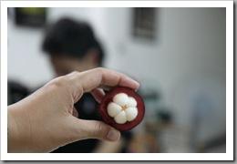 20090815_vietnam_0053