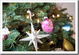 Nguyen Christmas-1