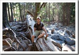 Yosemite Day 1-195