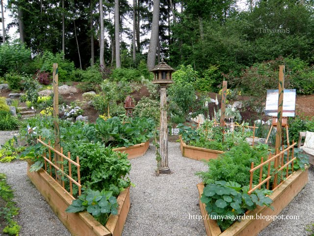 Mysecretgarden sprucing up a vegetable garden 3 for Veggie garden design
