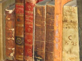 En la biblioteca, el el del lomo rojizo y letras doradas.