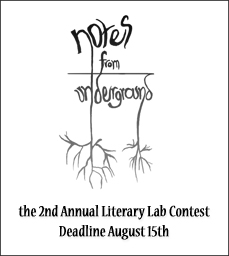Literary Lab Contest Button