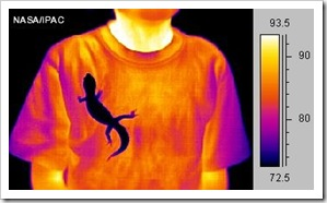 Thermal_IR_Gecko_nasaipac