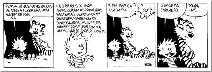 Calvin - Evolução