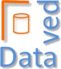 Логотип консалтинговой компании Датавед
