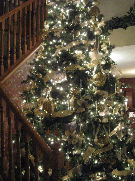 here is my best attempts to capture our gigantic christmas tree it is 12 feet tall and at least 5 feet wide it is in the entry near our staircase - 12 Foot Christmas Tree