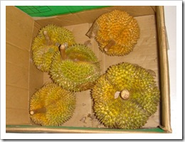 Durian-MYFH_20090629_2770-480