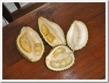 Durian-20100702_DSC01588