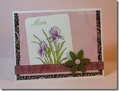 wsc79 purple lilies