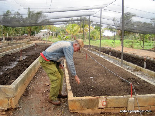 Vermiculture at Alamar