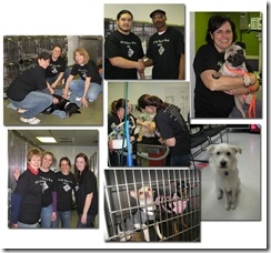 Be part of DFW Spay Day 2011 and help save lives!