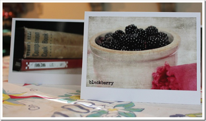 berries book