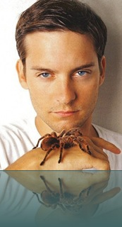 tobey-maguire_0