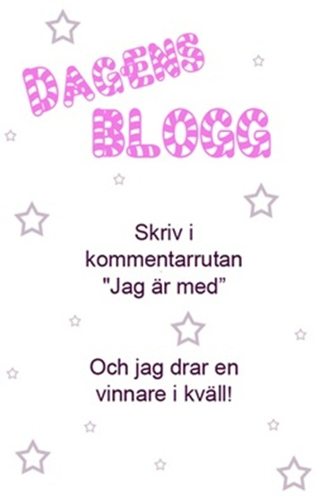 dagens blogg_thumb[2]