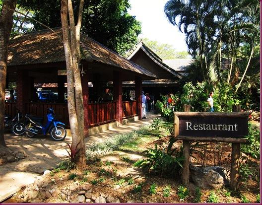mae taeng elephant park restaurant