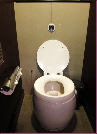 thai airways royal orchid lounge toilet
