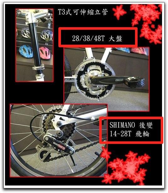 bicy5.jpg