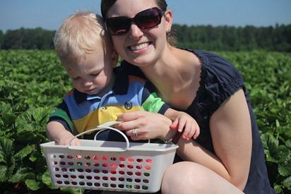 Strawberry Picking 18