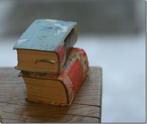 flickr books