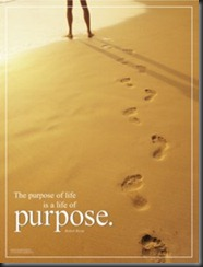 what-is-your-purpose-find-your-true-desire-and-passion-in-life
