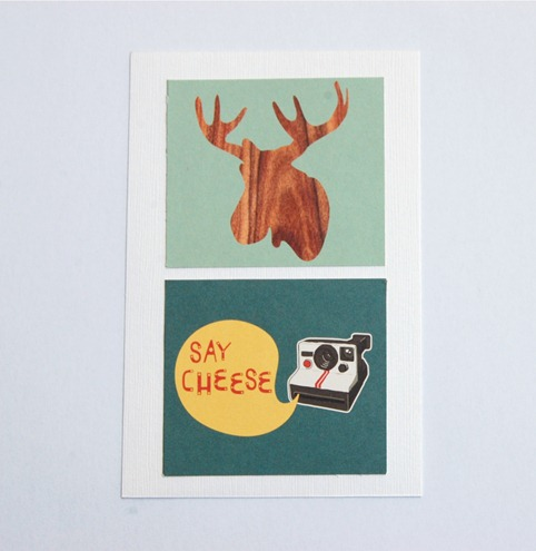 Moose and Camera