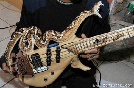guitar011