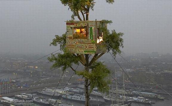 Rumah pohon (1)