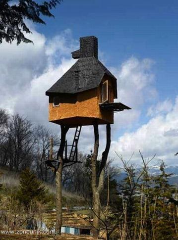 Rumah pohon (12)