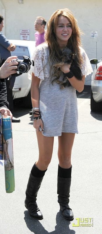 miley-cyrus-new-puppy-19