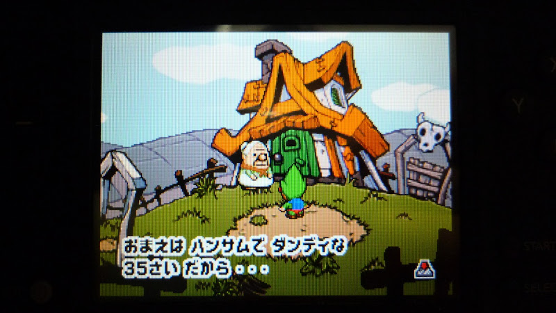 Tingle, チンクル, ゼルダ, Zelda, DS, アドベンチャー, adventure, aventura