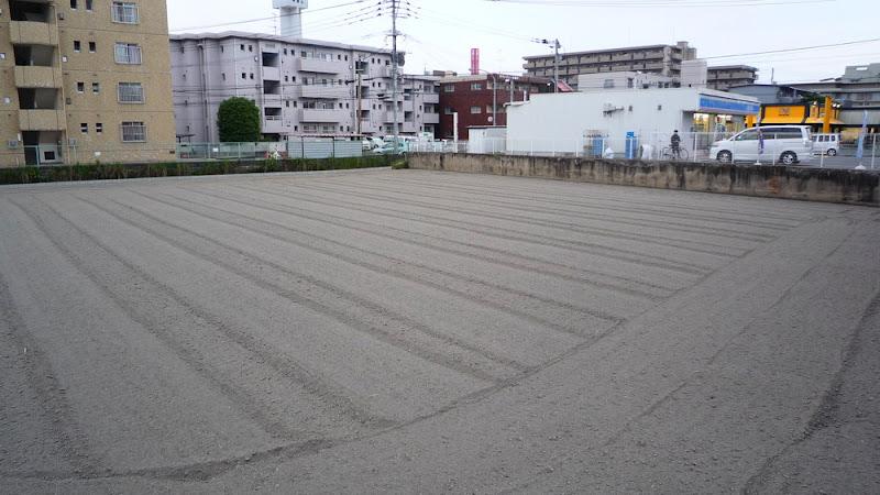 Campo de arroz 田んぼ Rice paddy