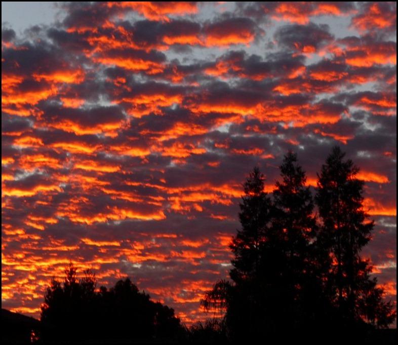 sunrise 001 (800x600)