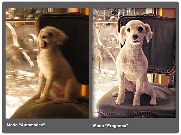 blog-paparazzi-fotografia-digital-velocidad-thumb