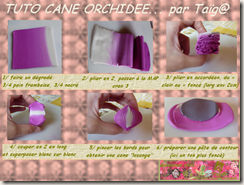 TUTO CANE ORCHIDEE PAGE 1