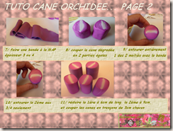 TUTO CANE ORCHIDEE PAGE 2