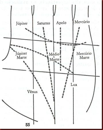 Mao mapa da palma