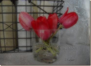 tulipbottles