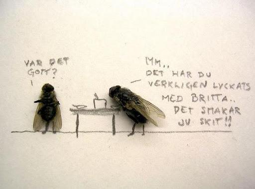 http://lh3.ggpht.com/_bKN77pn74dA/Sth970Wn6qI/AAAAAAAACyw/w4VolvtebtA/humor-with-dead-flies08.jpg