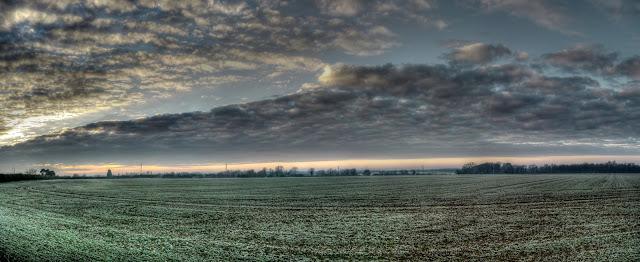 Quy fields.jpg