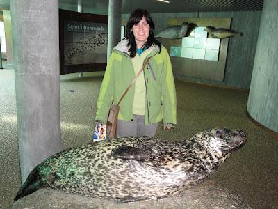 Una de las focas de la exposición