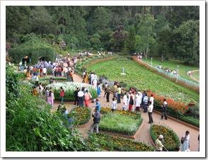 Ooty botanical garden italian garden