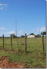 Santiago dos Parques - 05-09-1010 053