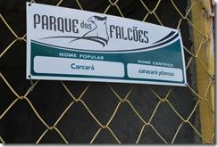Santiago dos Parques - 05-09-1010 123