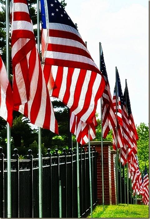 FLAGS2A