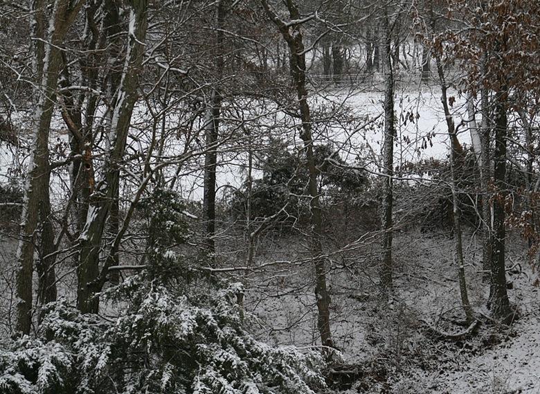 snow12A