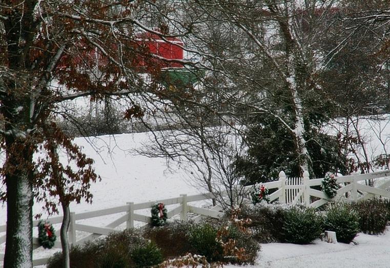 snow5A