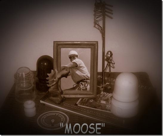 MOOSE1