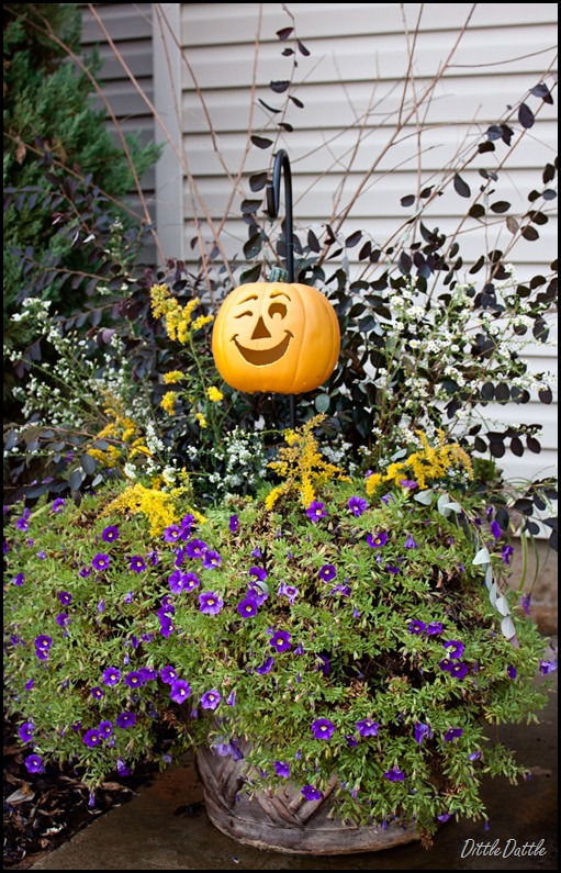 Fall-Wildflower-Planter