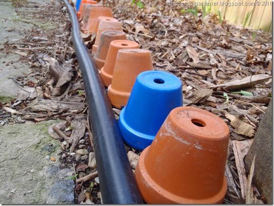Clay Pots Lining Shawna's Flagstone Path