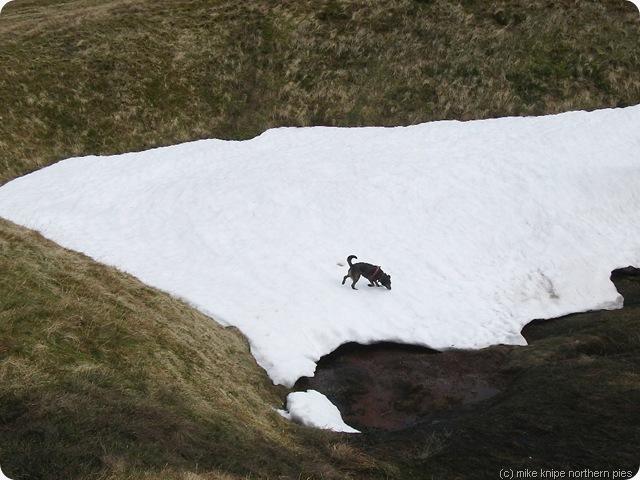 snow patch cross fell